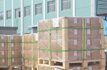 Pallets before Shipment