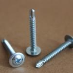 wafer head self drilling screw